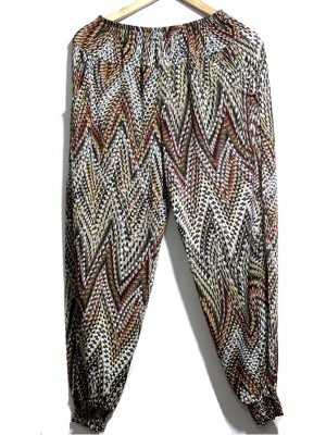 Casual Style Multicolor Printed Trouser For Women